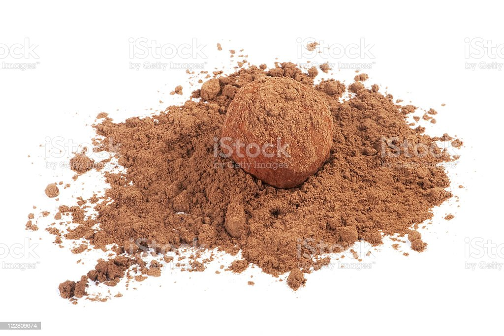 Chocolate truffle candy in cocoa powder isolated on white royalty-free stock photo