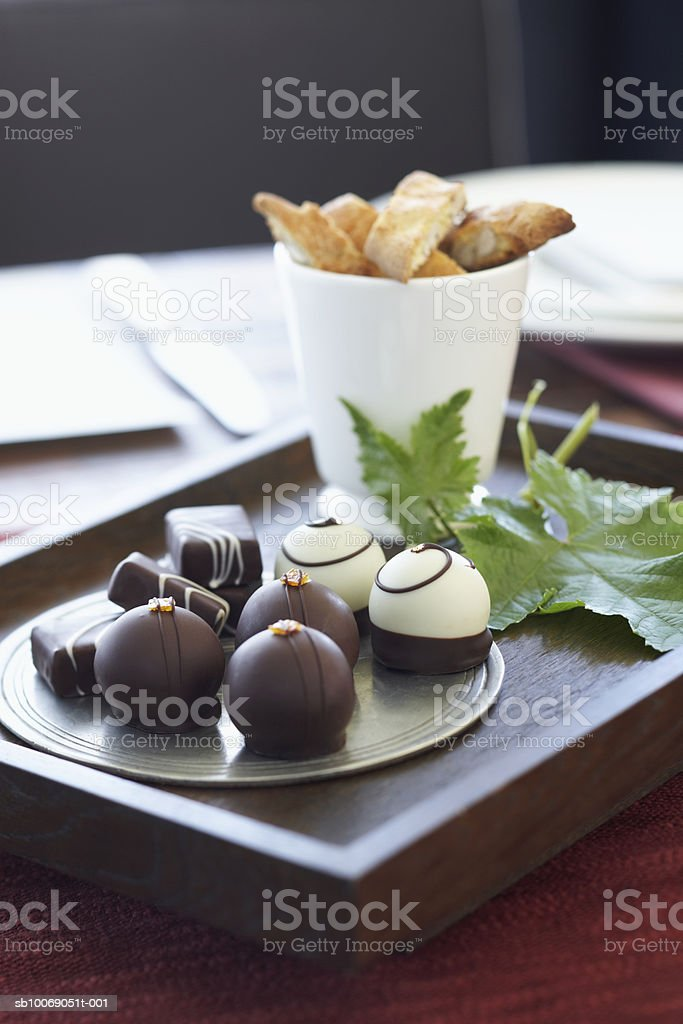 Chocolate truffles in tray, close-up royalty free stockfoto