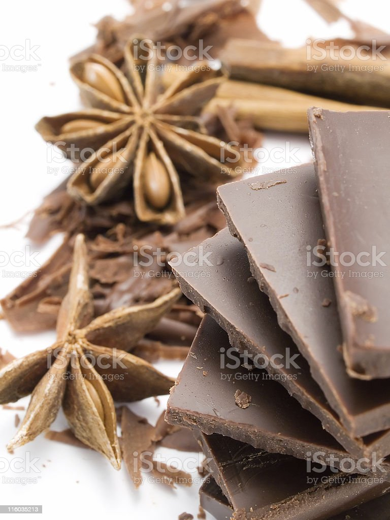 Chocolate with Cinnamon Sticks and Anise Stars royalty-free stock photo