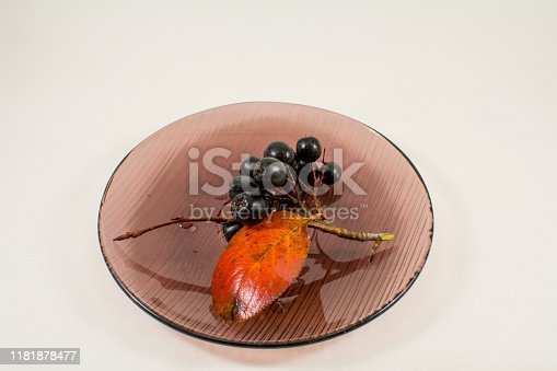 istock Chokeberry branch with berries on a transparent saucer 1181878477
