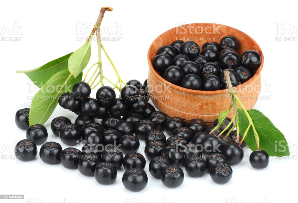Chokeberry with leaf in wooden bowl isolated on white background. Black aronia – zdjęcie