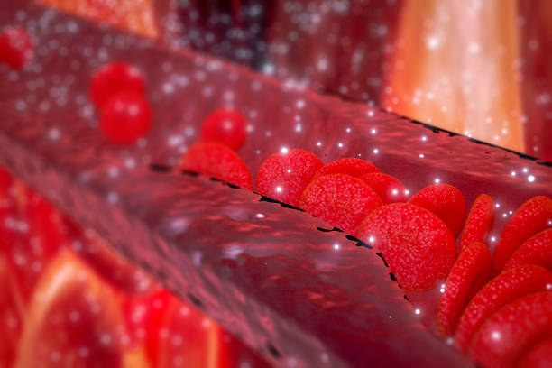 Cholesterol plaque in artery, Blood vessel with flowing blood cells, stock photo