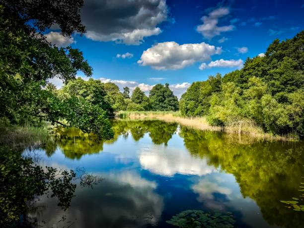 Cholmondeley reflective Garden Lake stock photo