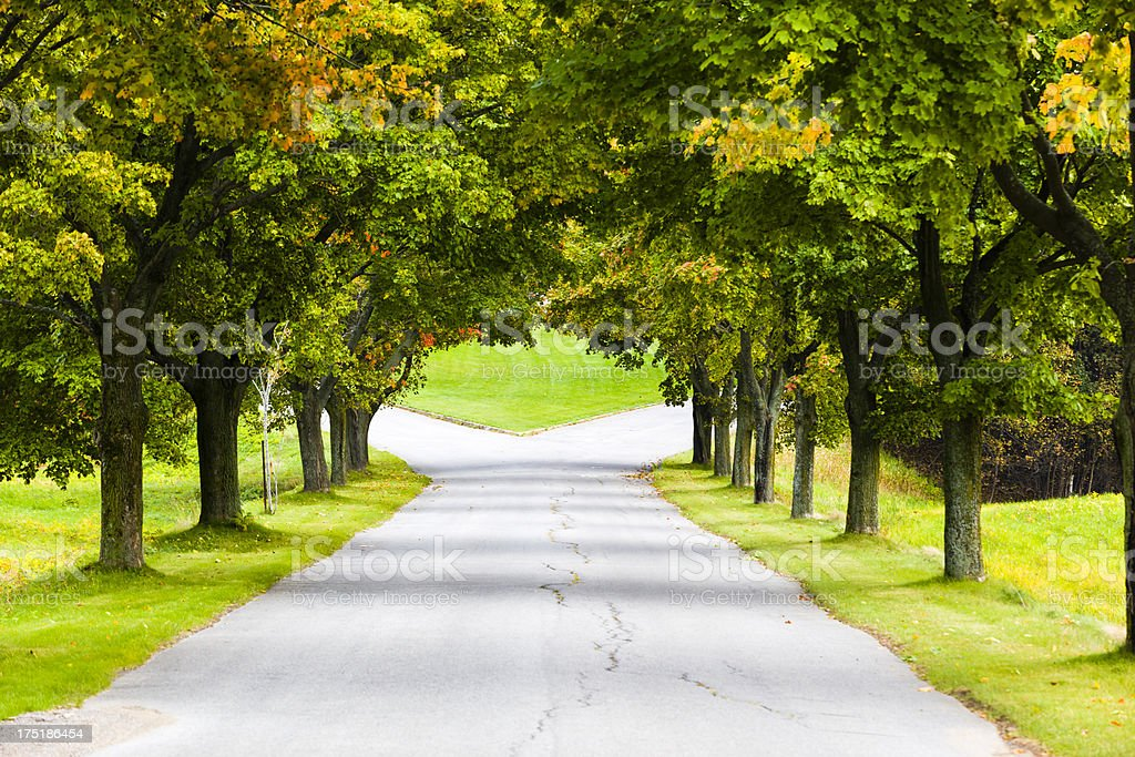 choose your way royalty-free stock photo