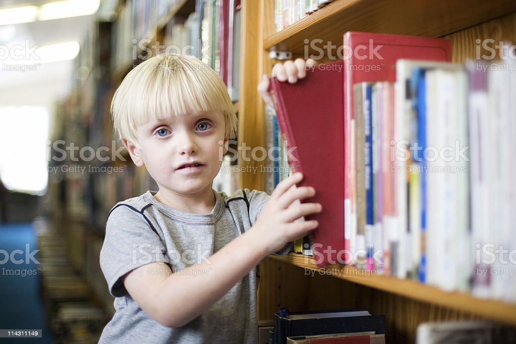 Choosing a library book royalty-free stock photo