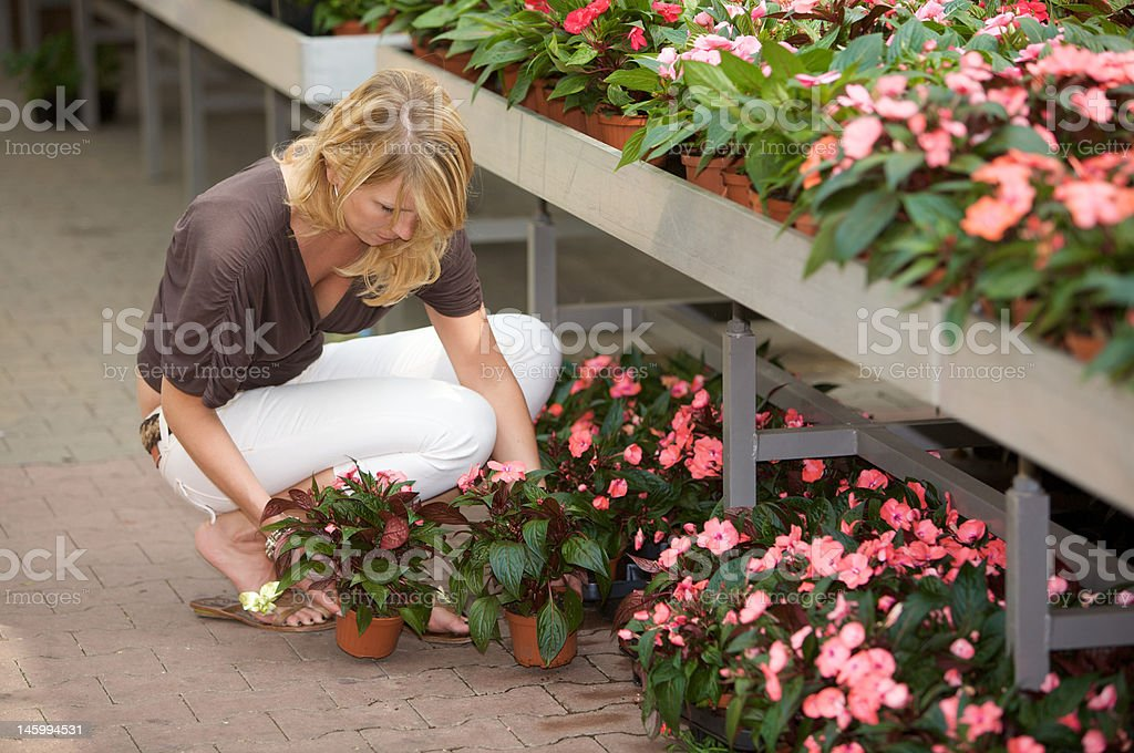 Choosing plants royalty-free stock photo