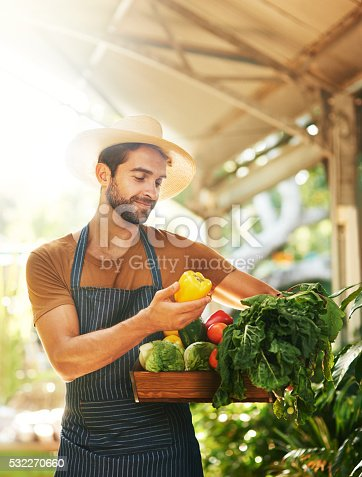 istock Choosing the best for his customers 532270660