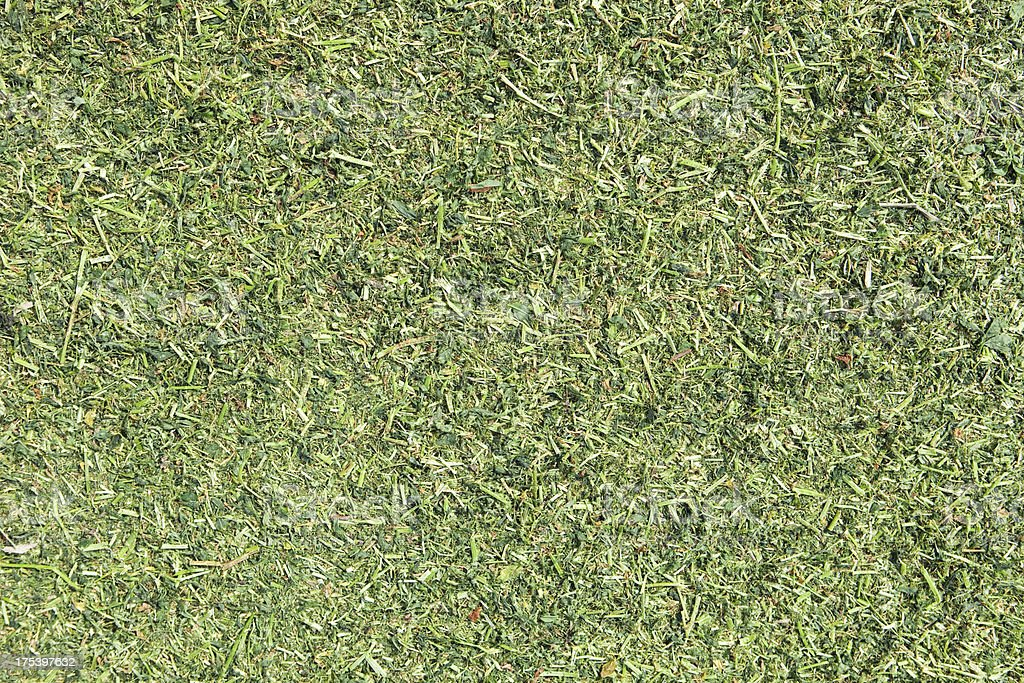 Chopped Alfalfa for Silage Background stock photo