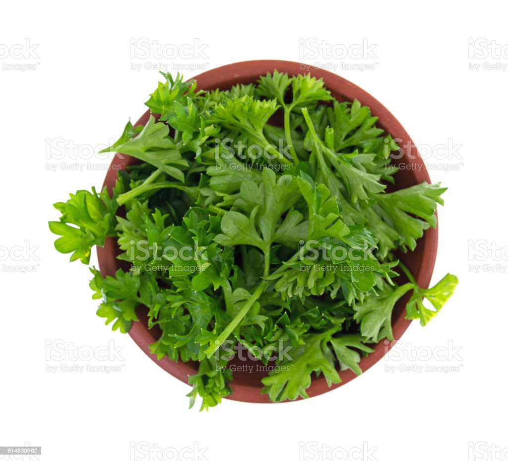 Chopped curly parsley in a red clay bowl stock photo