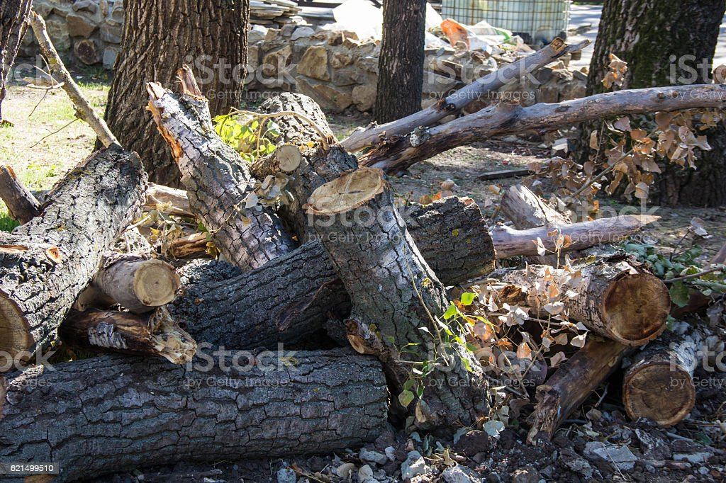 Aliment émincé Bois de chauffage sur une pile photo libre de droits