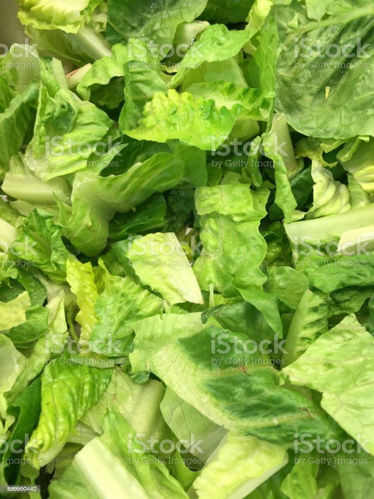 chopped romaine lettuce stock photo