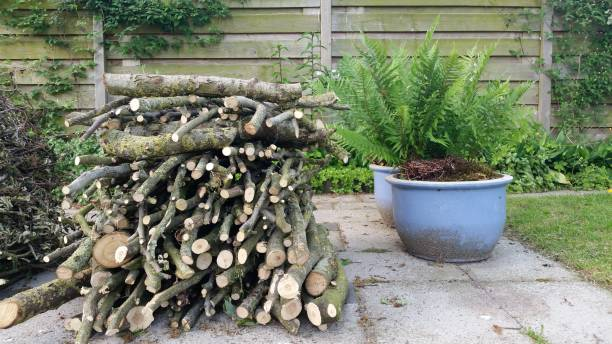 Chopped wood stack in garden stock photo