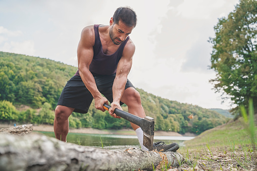 Chopping wood, Camping, Forester, forest, adventure, nature