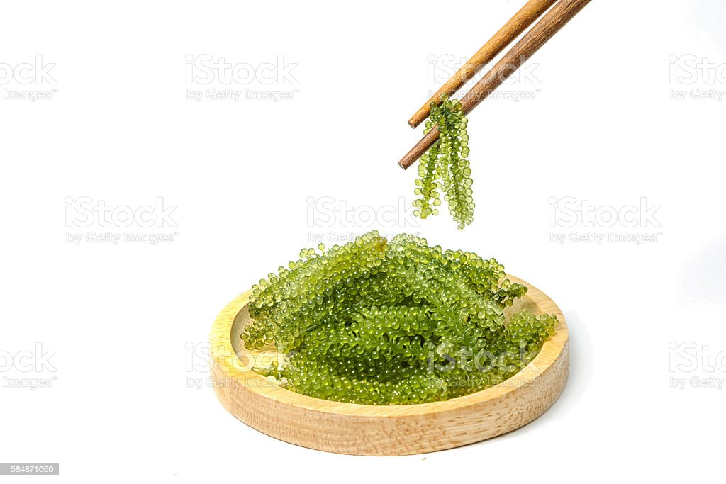 Chopsticks with sea grapes ( green caviar ) seaweed, stock photo