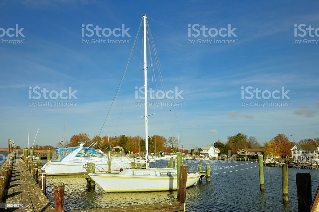 Choptank Marina Sailboat In Fall stock photo