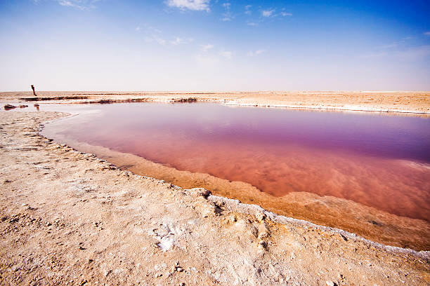 Chott el Djerid-salt lake en Túnez. - foto de stock