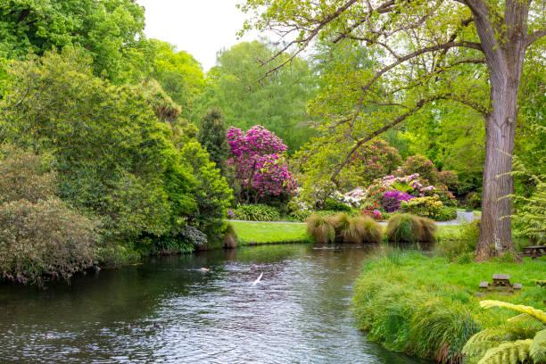 Christchurch Domain Gardens stock photo