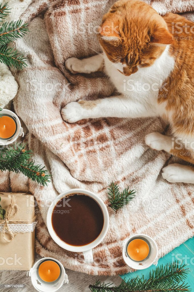 Christmas and New Year, autumn winter beautiful background, cozy home concept stock photo