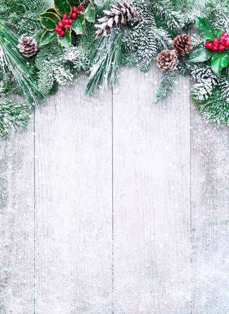 Christmas and New Year background with fir branches Christmas and New Year background with fir branches, holly and snowfall on wooden white board christmas background stock pictures, royalty-free photos & images