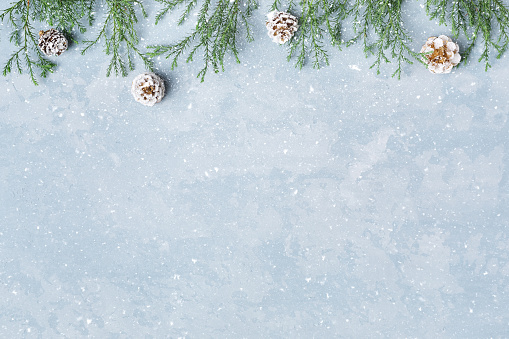 Christmas and New Year snowy background with twigs and cones.