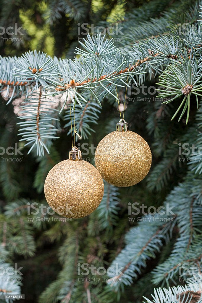 Christmas and New Year`s ball on the background spruce, close-up royalty-free stock photo