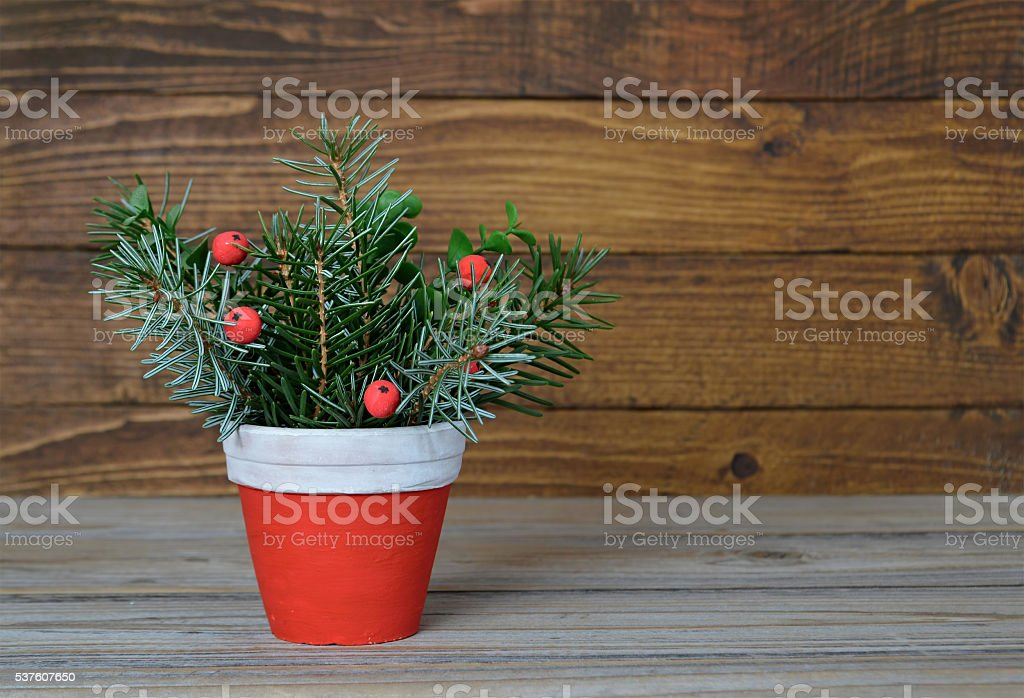 Christmas arrangement in clay pot stock photo