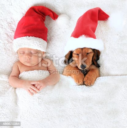 Sleeping newborn Christmas baby alongside a dachshund puppy wearing Santa hats.