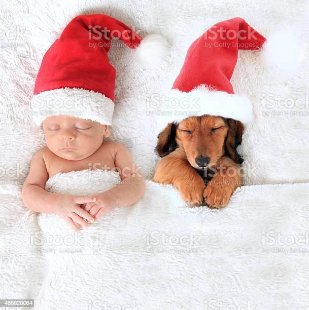 Christmas baby and santa puppy picture id486620064?b=1&k=6&m=486620064&s=612x612&h=na5kdtmeohp 4wtyktcs1gr tysp3kzxttaozz6kwgm=