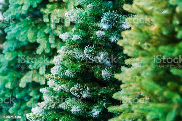 Photo of Christmas background. An artificial tree. New year