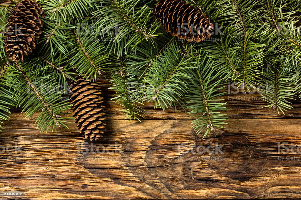 christmas background fir tree branches and cones on wood stock photo