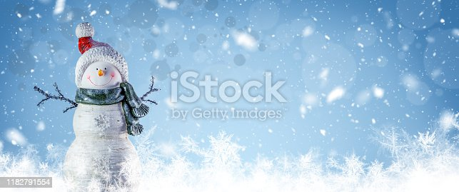 Christmas And Winter Panoramic Background