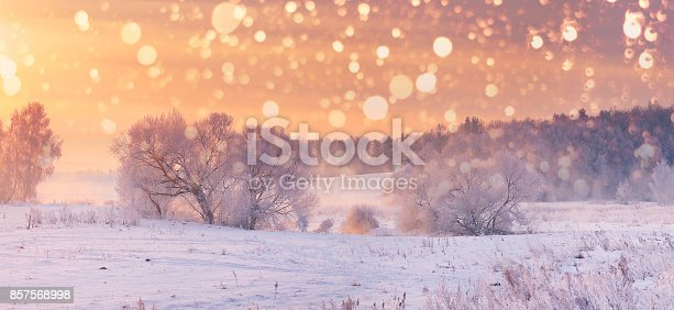 Christmas  background. Snowy morning scene. Xmas snowflakes on colorful sky background.