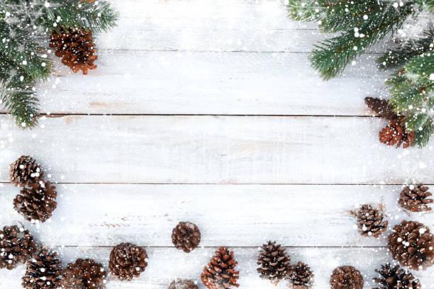 weihnachten hintergrund - kiefernzapfen stock-fotos und bilder