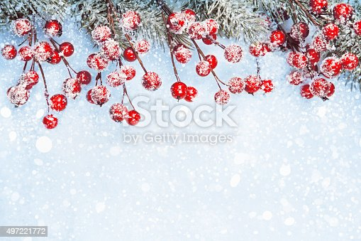 istock Christmas background with berries 497221772