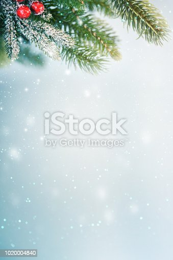 istock Christmas background with branch and ornaments 1020004840
