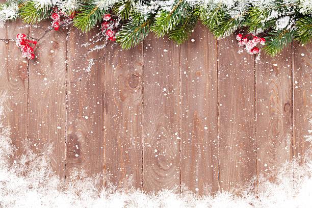 weihnachten hintergrund mit tanne baum - stechpalme stock-fotos und bilder