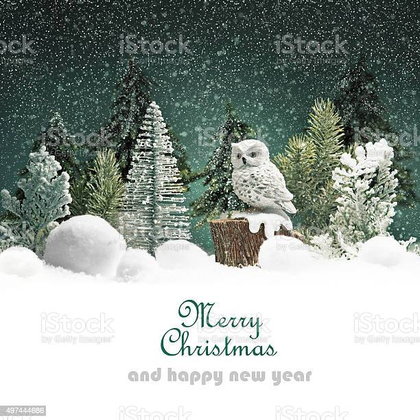 Christmas background with forest picture id497444686?b=1&k=6&m=497444686&s=612x612&h=oluoquu8xromwyy7o8hibykcntkascdzwutup6d2y4i=