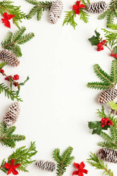Weihnachtlicher Hintergrund mit Tannenzapfen, Stechpalmen mit roten Beeren und Tannenbaum auf weiß – Foto
