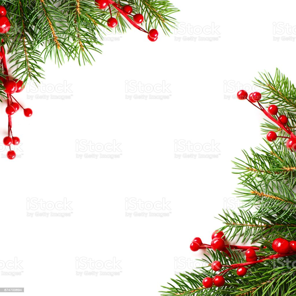 Christmas Background With Red Holly Berries And Xmas Tree Twig Stock