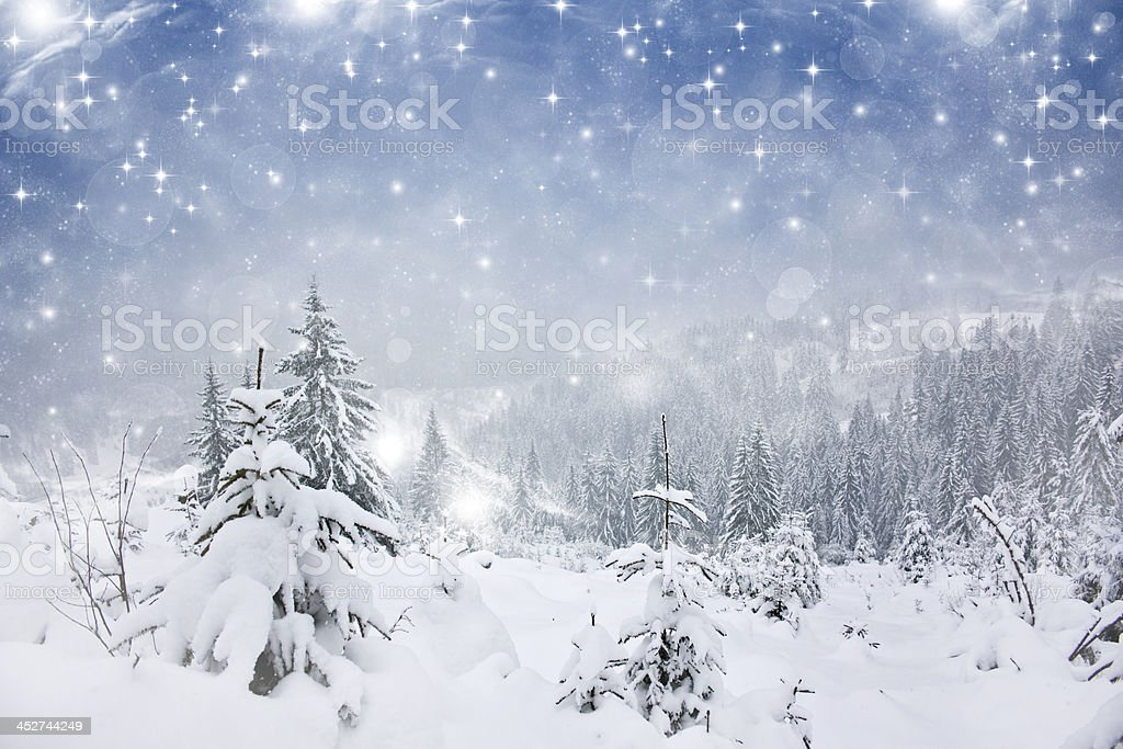 Christmas background with snowy fir trees royalty-free stock photo