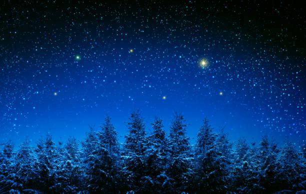 kerst achtergrond met sterren en bomen in winterbos. - kerstster stockfoto's en -beelden