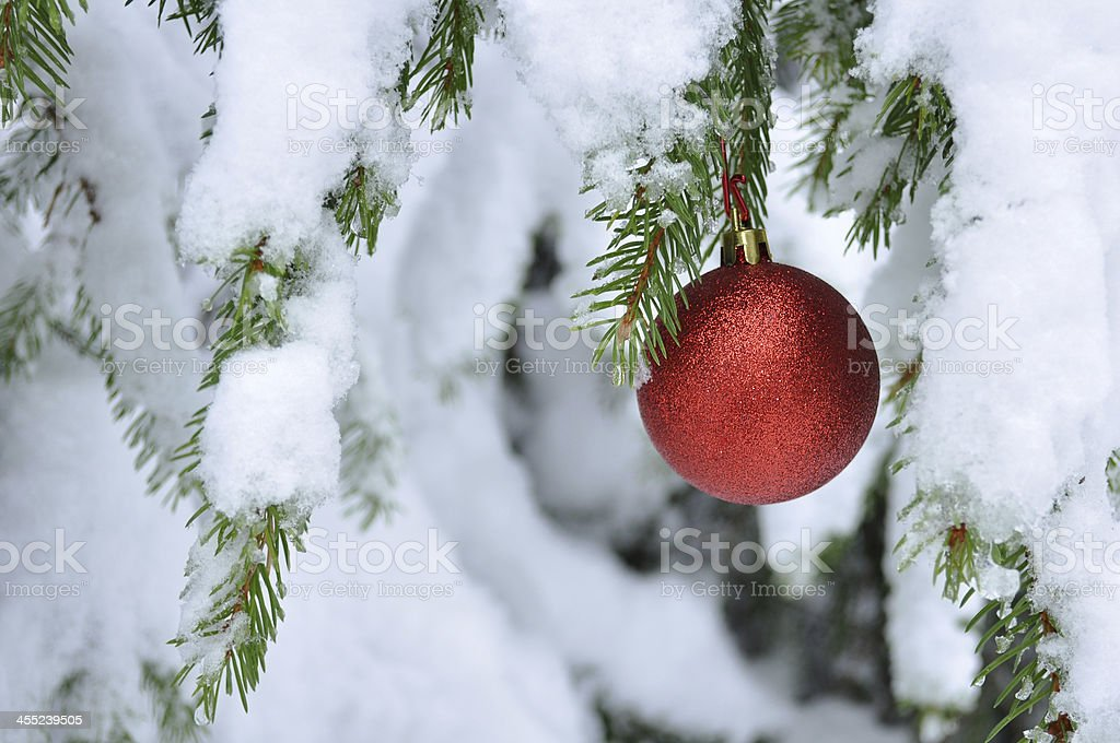 Christmas ball covered with snow stock photo