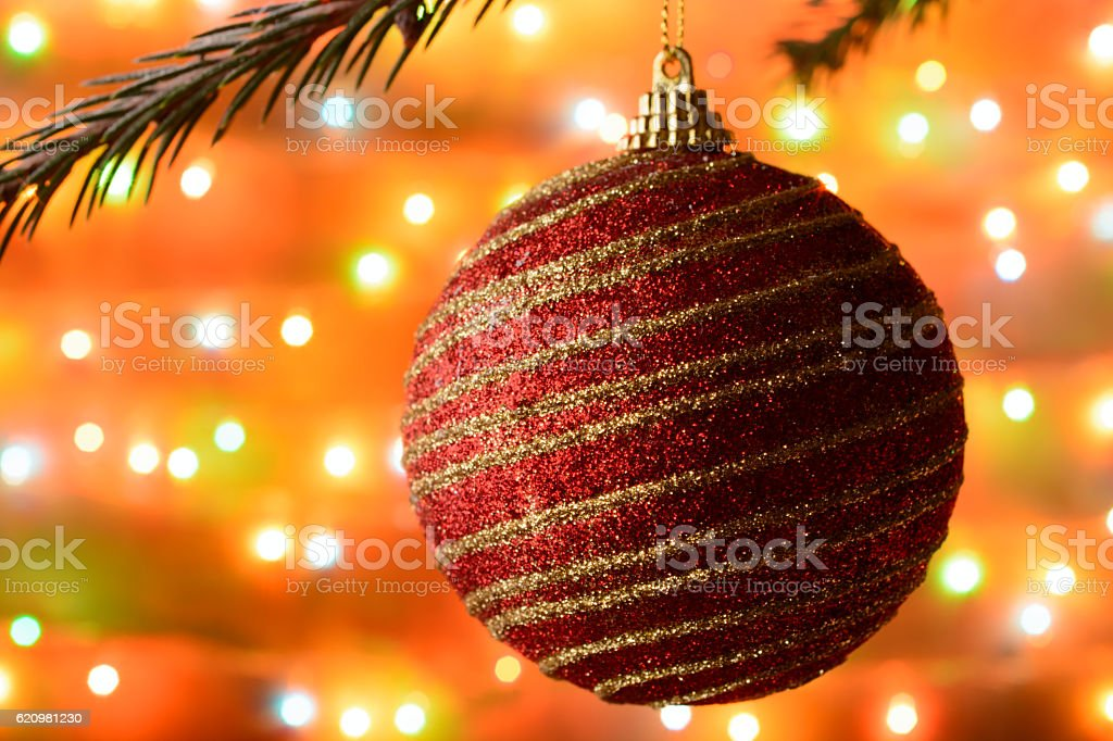 Christmas ball hanging on a spruce branch foto royalty-free