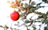 Christmas ball hanging on the tree.