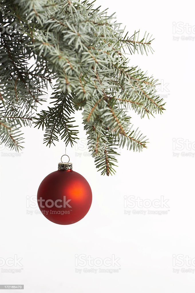 Christmas ball on spruce branch royalty-free stock photo