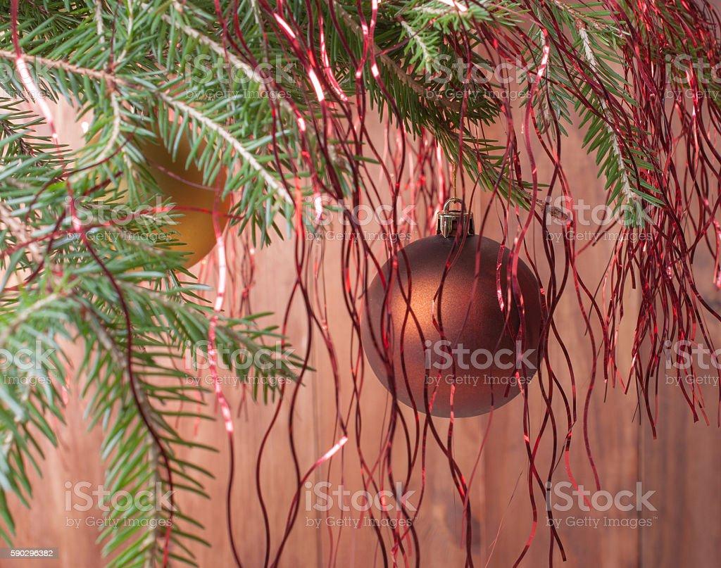 Christmas balls on branch royaltyfri bildbanksbilder