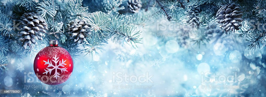 Christmas Banner - Fir Branch And Red Bauble stock photo