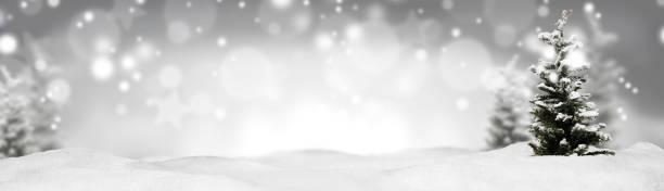 weihnachts-banner-panorama-hintergrund - weihnachtsprogramm stock-fotos und bilder