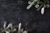 Christmas black background with snowy fir tree and cones. Top view with copy space