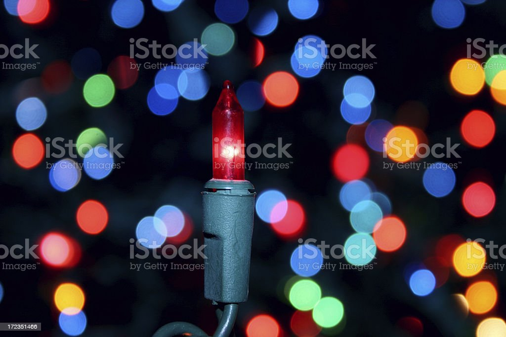 Christmas Blues royalty-free stock photo